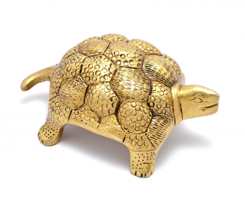 Vaastu Tortoise