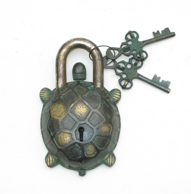 Tortoise Design Door Lock Brown