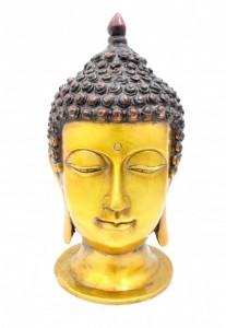 Divine Buddha Head Multicolored